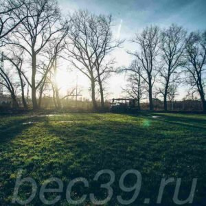 watermarked — 2B3A2028